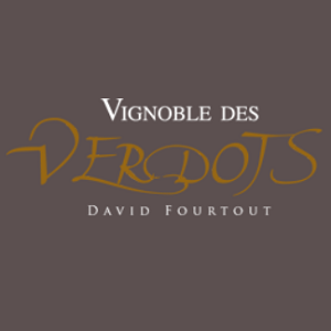 Southwest France, France: Vignoble des Verdots